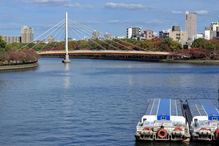 大川、川崎橋