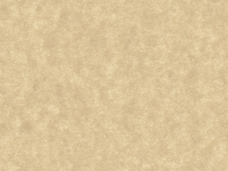 and cellulose: paper texture background with copy space
