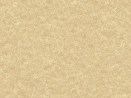 copy space: paper texture background with copy space