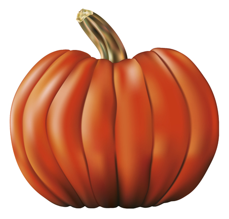 dietary fiber: big halloween pumpkin