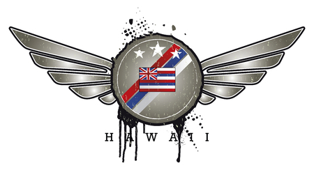 hawaii vintage grunge shield with wings Ilustrace