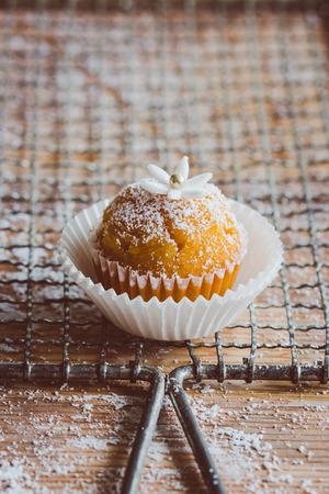 Fresh muffin photo