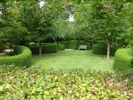 City park with artfully cut shrubs