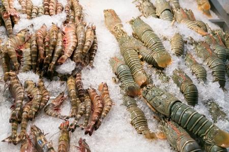 Shrimps on ice Stock Photo