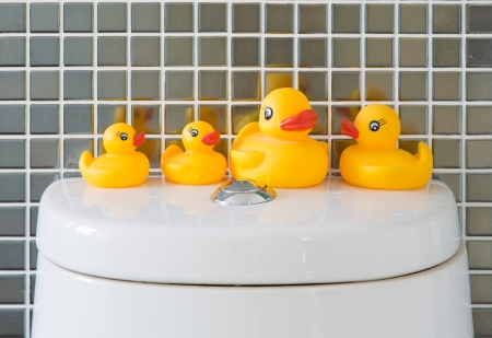 squeaky clean: Rubber ducks