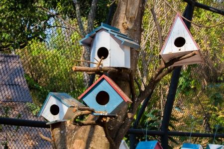 bird house: Bird house Stock Photo