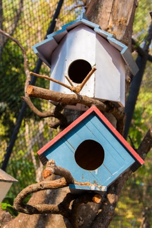 Bird house photo