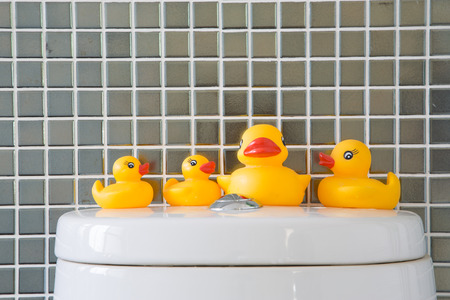 squeaky clean: Rubber duckie