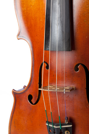 Violin isolated on white blackground, close up photo