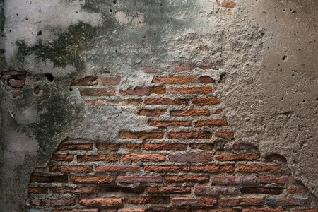Pared de ladrillo desgastado con el molde Foto de archivo - 29809081