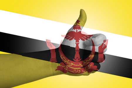 aec: Flag of AEC country with thumbs up hand