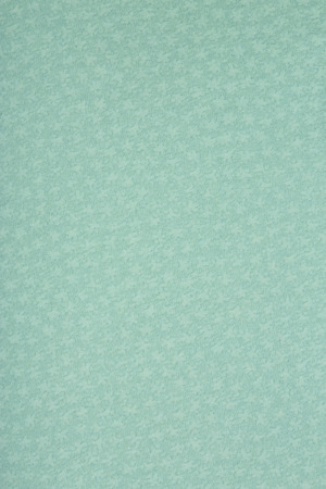 art and craft: Texture of an art craft paper with star shaped flake