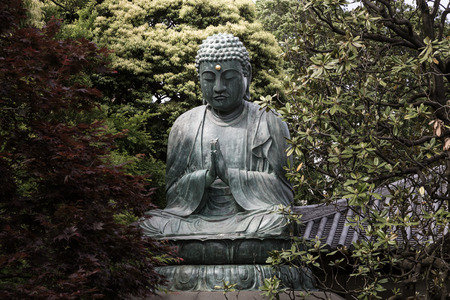 Buddha statue found in Tokyo, hidden among trees