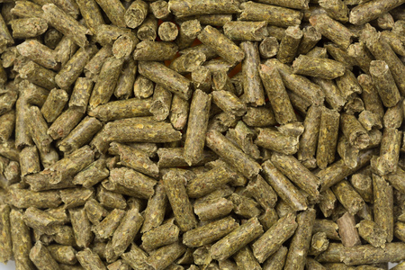 Food pellets for hamster,  rabbits, guanea pig, or mouse Stock Photo