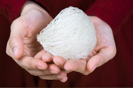 nido de pájaro comestible fresco en el Libro Blanco