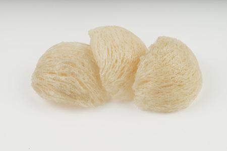 Fresh edible birds nest on white paper