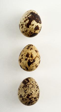 Quail egg isolated on white back ground