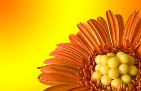 Oranje bloem met vitamine dragees in het midden tegen gele een oranje kleur overgang  Stockfoto - 5864224