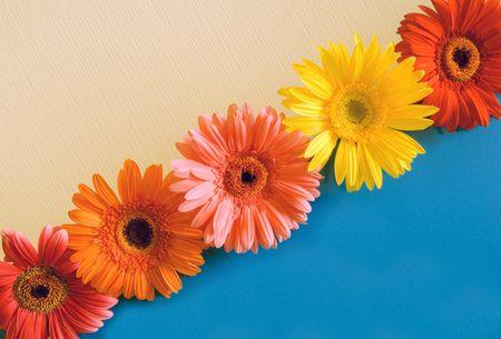 Vijf heldere kleuren op een donker geel blauwe achtergrond op een diagonaal  Stockfoto