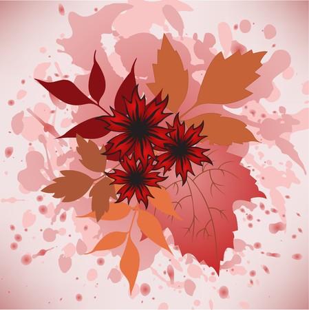 herbstblumen: Mehrere Herbstblumen und Vergilbung Bl�tter aus verschiedene B�ume