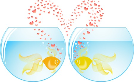 two gold fish lovers in different aquariums Stock Vector - 8809815