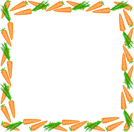 square frame of carrots on a white background Stock Vector - 8977810