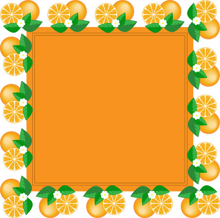 orange square frame made of fruit and orange flower Vector