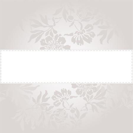 wedding bands: Fondo abstracto con una banda blanca en un hermoso color gris