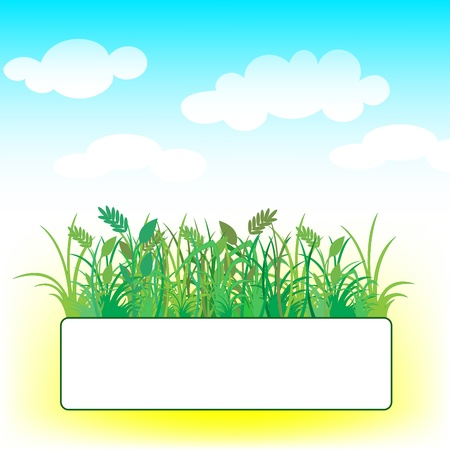 card with the grass against the blue sky with clouds Stock Vector - 9256119