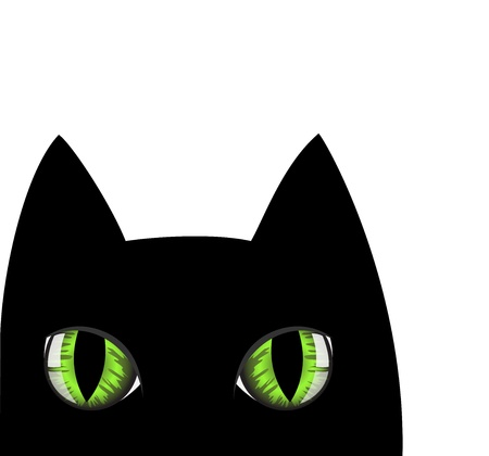 threatened: muzzle of a black cat with green eyes