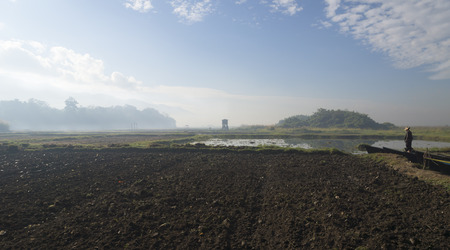 lonelyness: misty field at inle lake