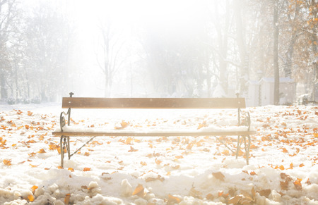 coldness: Winter bench in a park in Zagreb, Croatia