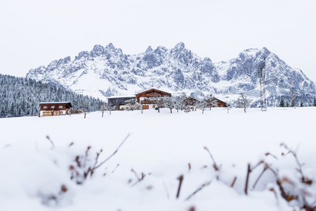 Wilder Kaiser mountainrange with snow and branches during winter, Going am Wilden Kaiser, Tyrol, Austria Stok Fotoğraf