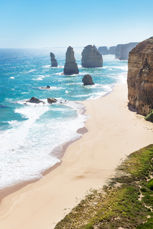 Twelve Apostels with beach and grass and backlight at the Great Ocean Road vertical, Victoria, Australia