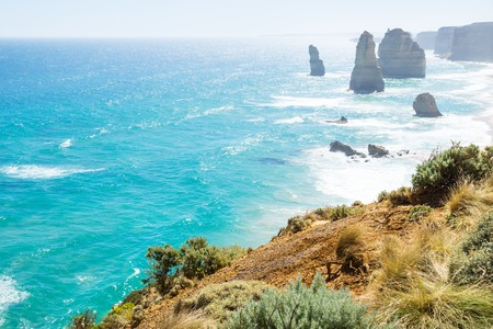 Grassland and green bushes at the Twelve Apostels at the Great Ocean Road, Victoria, Australia