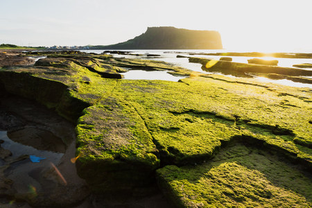 Volcano stones at sunrise at Ilchulbong volcano crater with view over ocean and green moss stones, Seongsan, Jeju Island, South Korea Stockfoto