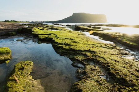 Ocean at sunrise at Ilchulbong volcano crater with view over green moss stones, Seongsan, Jeju Island, South Korea Stockfoto
