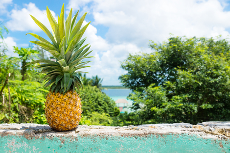 Pineapple on a wall with view to Bacalar lake and dock, Bacalar, Mexico Stock Photo