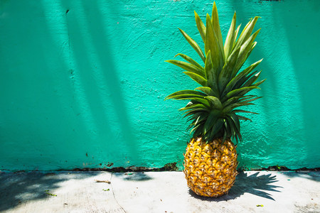 Huge Pineapple on turquoise wall with sunlight and shadow, Bacalar, Mexico