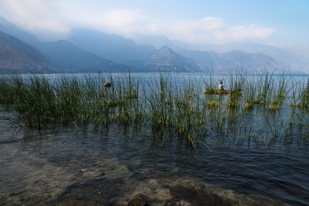 Reed along the shore with misty volcanic mountains at Lago Atitlan, San Juan la Laguna, Guatemala, Central America Stock Photo