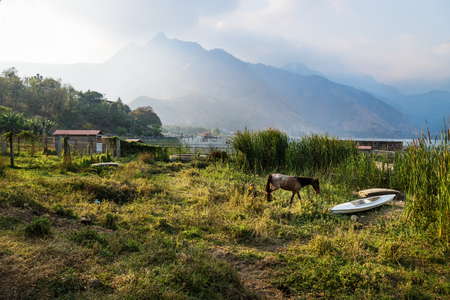 Horse and a canoe on a meadow along Lago Atitlan with mountainrange and backlight, San Juan la Laguna, Guatemala, Central America