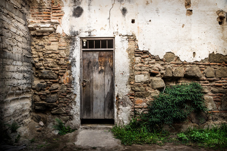 Abandoned wall with wooden door and bush in Antigua, Guatemala, Central America