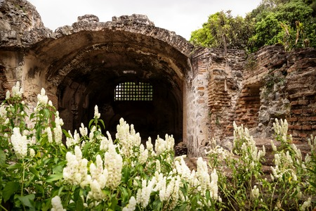 Ruins in Hermano Pedro with green garden, Antigua, Guatemala Banque d'images
