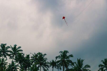 Red kite on a blue dark cloudcape with palm trees, Varkala beach, India Reklamní fotografie