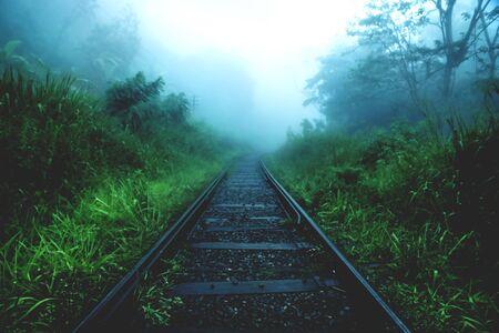 Blurrex railway through green dark foggy jungle forest, Ella Sri Lanka