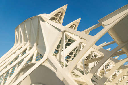 Valencia, Spain - 17 February 2020: Detail of the roof at the Science Museum 'Princep Felip' in the City of Arts and Sciences designed by architects Santiago Calatrava and Felix Candela
