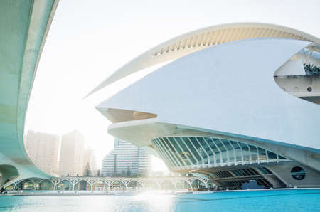 Valencia, Spain - 17 February 2020: Front of Palau des Arts Reina Sofia in the City of Arts and Sciences designed by architects Santiago Calatrava and Felix Candela