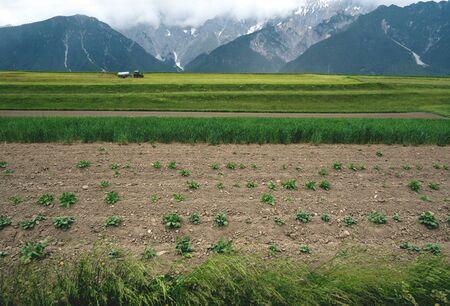 Farmer fertilizing fields with tractor in the Austrian Alps, Mieminger Plateau before rain, Tyrol, Austria
