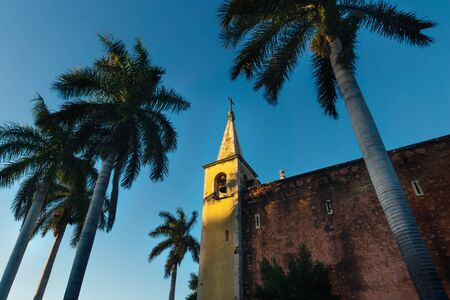 Bell tower of Santa Ana church framed by palm trees during sunset light, and cloudless blue sky Merida, Yucatan, Mexico Stock Photo
