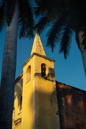 Tower of Santa Ana church framed by palm trees during sunset light, and cloudless blue sky Merida, Yucatan, Mexico